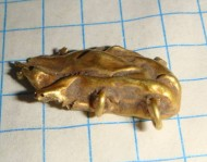 Находка скифского золотого предмета