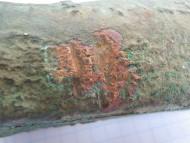 Медный топор топор-молот Трипольская Культура