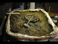 Клад викингов в Дании
