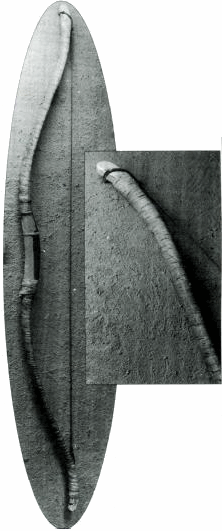новгородский лук