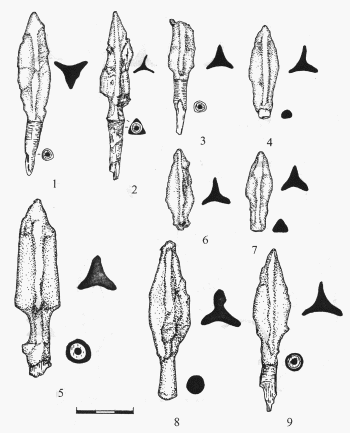 наконечники стрел 7 век