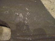 топор для раздела бревен на доски