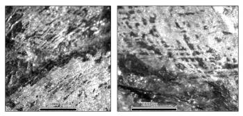 Макросъемка поверхности полумаски из Вщижа.