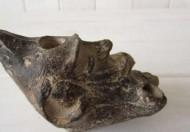 Греко-римская масляная лампа виде головы