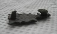 Тонкой работы рельефная поясная бронзовая накладка в виде шкуры ягненка с геральдическим сюжетом