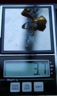 Вес золотой серьги кочевников