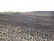 Выжженное солнцем поле