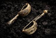 """Золотые фибулы из захоронения """"кельтской принцессы"""" в Хенебурге. Фото: Dirk Krausse et al / Antiquity"""