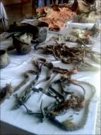Инвентарь древнемонгольского погребения