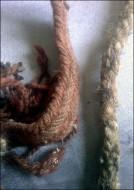 Плетка