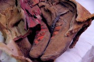 Знаменитые древние монгольские сапоги с «эмблемой Adidas»