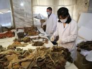 Работы по изучению монгольской мумии, носящей «Adidas»