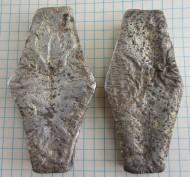 Две гривны Киевского типа