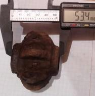 Пернач Семипер. Железо вес 321 грамм