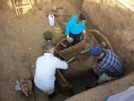 Археологи в Хорватии нашли римскую колесницу с лошадьми