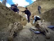 В Болгарии обнаружена древняя колесница