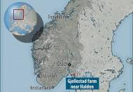 В Норвегии начали операцию по спасению погребенного корабля викингов