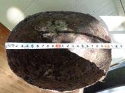 Четырехчастный Ордынский шлем, 14 век